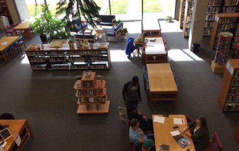 Library Offerings Vast, Varied