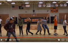 Volunteers Bond Over Lip Sync Challenge Video