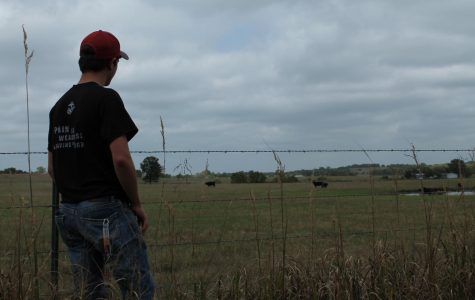 Rancher Beefs Up Education
