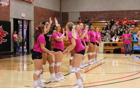Photo Gallery: Pink Out Volleyball Game Big Success
