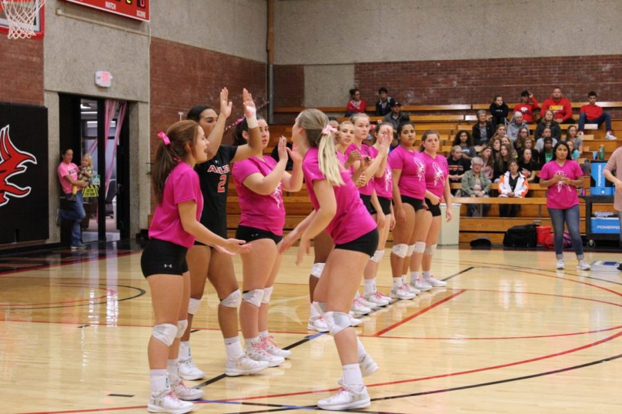 The Lady Devils volleyball team showed their support for Breast Cancer Awareness Month by sporting pink jerseys at Wednesday nights Pink Out game.
