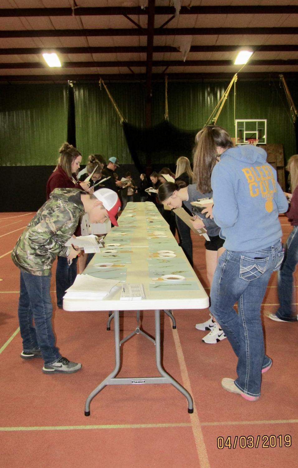 Students+from+area+high+schools+taking+part+in+the+entomology+contest+at+Allen+County+Aggie+Days+.