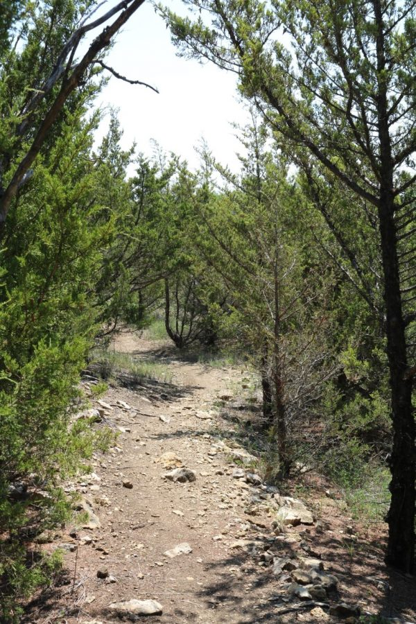 The Lehigh Trails are a popular fitness and nature opportunity in south Iola.
